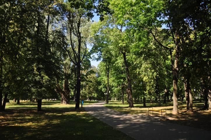 - Прысядзібны парк пры былой сядзібе Крывашэіна.