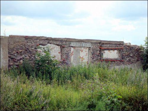 - Усадьба . Развалины хоз.постройки