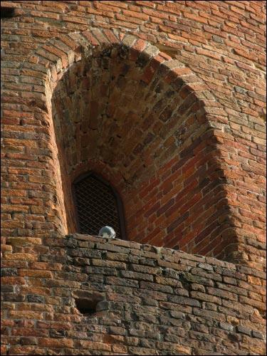 -  Камянецкая Вежа (Белая). Фрагмент
