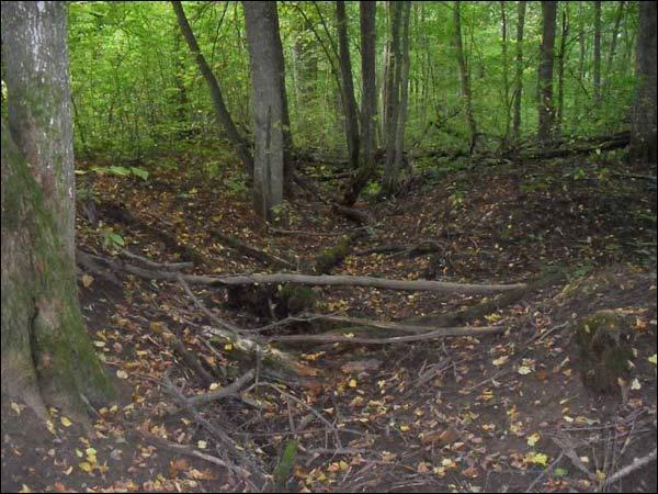 - Прысядзібны парк . Страчаны канал уздоўж парку (фота 09.2009)
