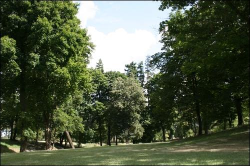 - Zespół pałacowo-parkowy . Park pałacowy